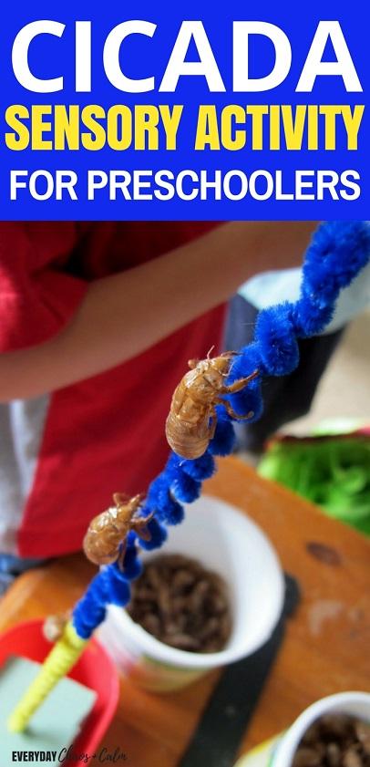 Bug Activities for Kids: Cicada Sensory Activity for Preschoolers