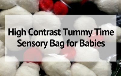 High Contrast Tummy Time Sensory Bag for Babies