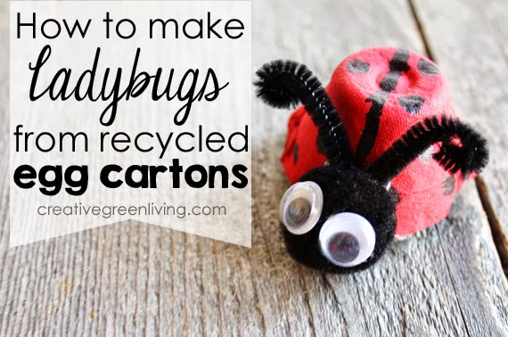 How to Make a Ladybug with a Recycled Egg Carton
