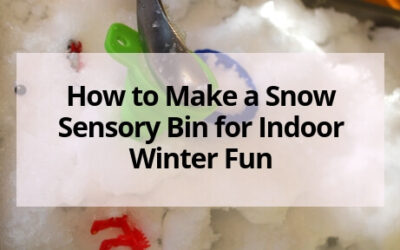 Snow Sensory Bin for Indoor Fun in the Winter