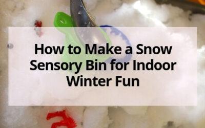 Snow Sensory Bin for Indoor Fun in the Winter