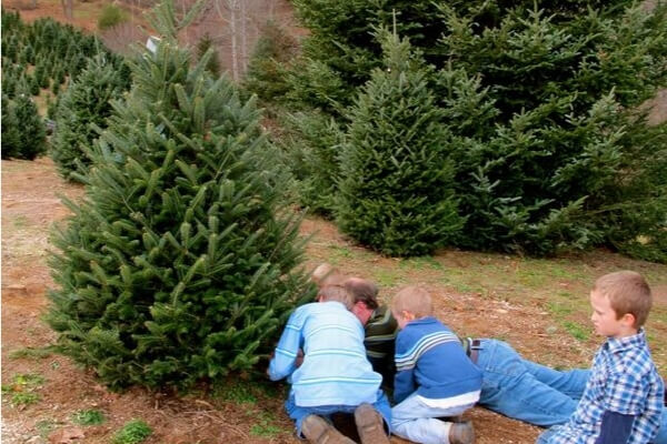 39 Christmas Countdown Activities For Kids And Families
