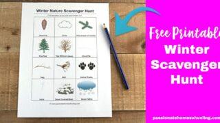 Free Printable Winter Scavenger Hunt For Kids