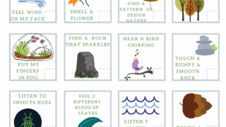 Nature Sensory Scavenger Hunt for Kids (Free PDF Printable)