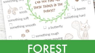 Forest treasure hunt printable for kids