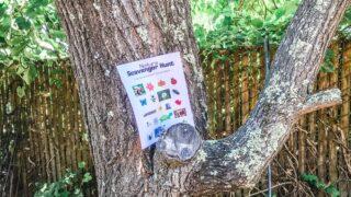 Free Nature Scavenger Hunt Printable for Kids