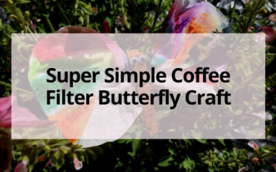 Super Simple Coffee Filter Butterfly Craft