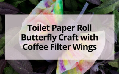Easy Toilet Paper Roll Butterfly Craft with Coffee Filter Wings