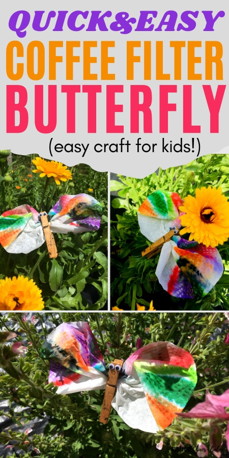quick and easy coffee filter butterfly