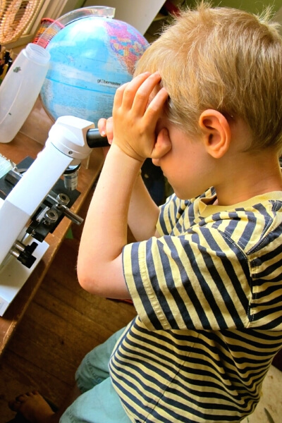 boys looking into a microscope