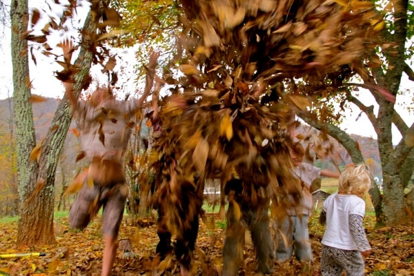 kids playing in a leaf pile and throwing leaves in the air